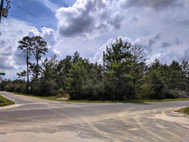 Pine Street, Paisley, FL 32767 (MLS #O5866072) :: The Figueroa Team