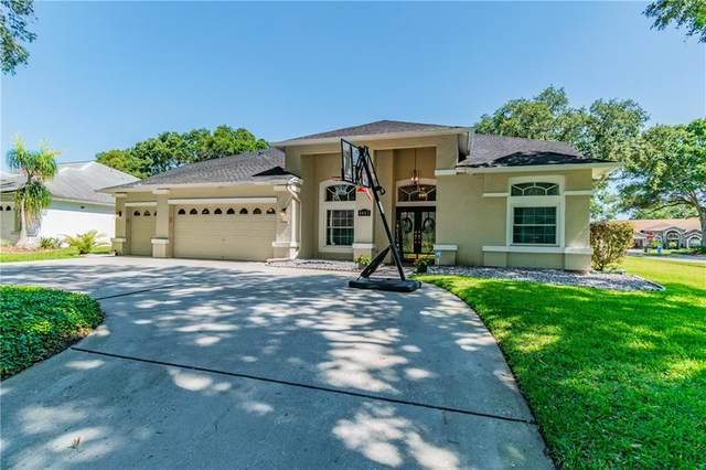 4403 Casey Lake Boulevard, Tampa, FL 33618 (MLS #O5866380) :: Griffin Group