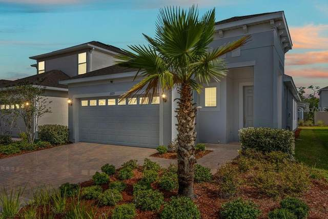 2729 Picasso Court, Kissimmee, FL 34743 (MLS #O5866388) :: Homepride Realty Services