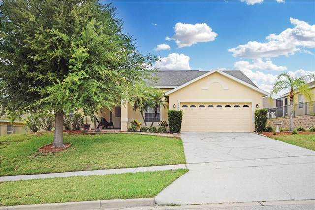 12819 Cloverdale Lane, Clermont, FL 34711 (MLS #O5866615) :: Griffin Group