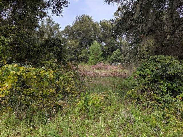 County Road 42, Paisley, FL 32767 (MLS #O5866655) :: The Lersch Group