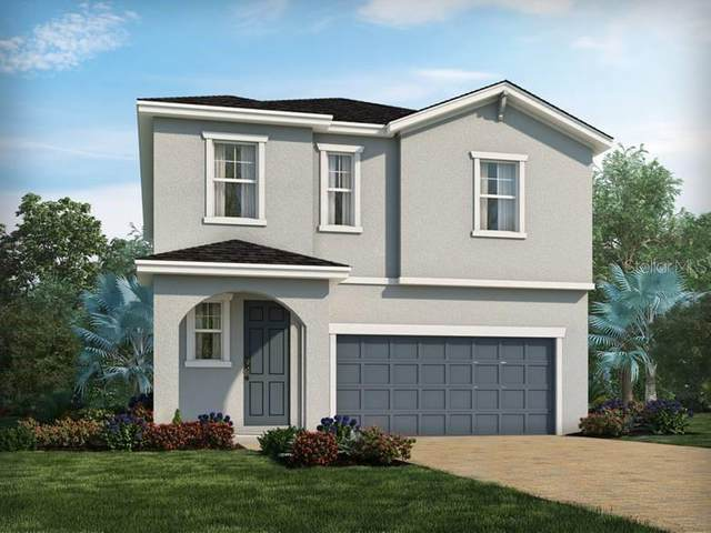 34063 White Fountain Court, Wesley Chapel, FL 33545 (MLS #O5866832) :: The Duncan Duo Team