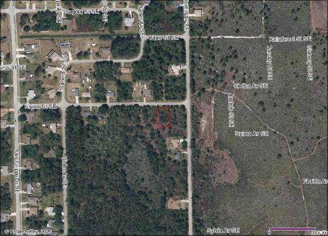 1388 Union Street SE, Palm Bay, FL 32909 (MLS #O5867173) :: Alpha Equity Team