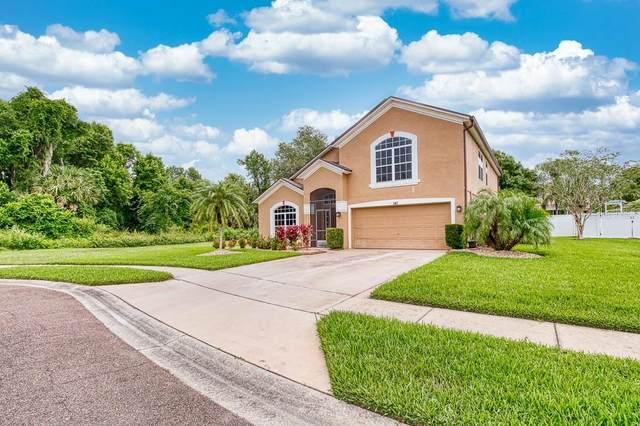 347 Appaloosa Court, Sanford, FL 32773 (MLS #O5867243) :: Baird Realty Group