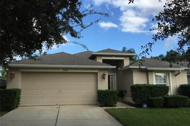 2992 White Cedar Circle, Kissimmee, FL 34741 (MLS #O5867314) :: Bustamante Real Estate