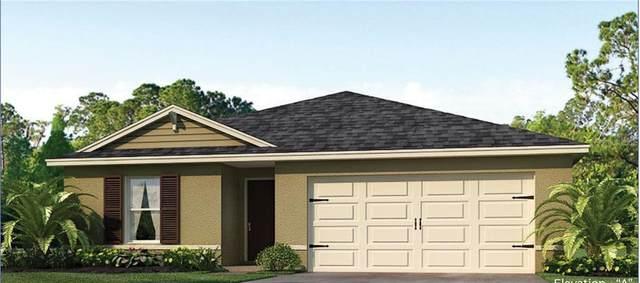266 Meadowbrook Boulevard, Winter Haven, FL 33881 (MLS #O5867506) :: The Duncan Duo Team