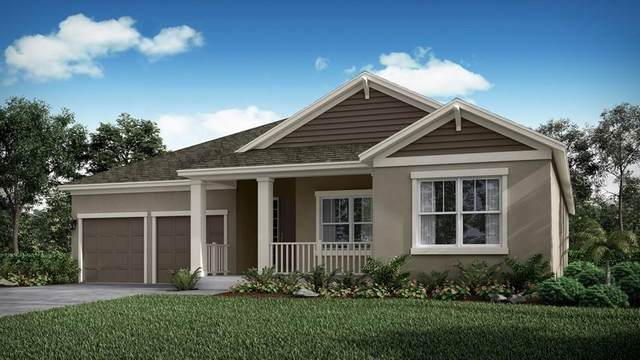 4753 Terrace Bluff Street, Winter Garden, FL 34787 (MLS #O5867518) :: Bustamante Real Estate
