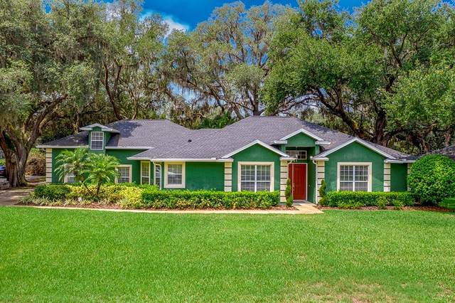 Address Not Published, Saint Cloud, FL 34771 (MLS #O5867683) :: Godwin Realty Group