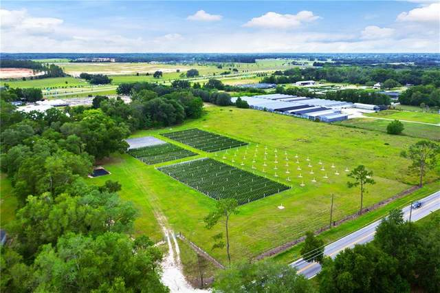 3622 and 3608 Plymouth Sorrento Road, Apopka, FL 32712 (MLS #O5868276) :: The Paxton Group
