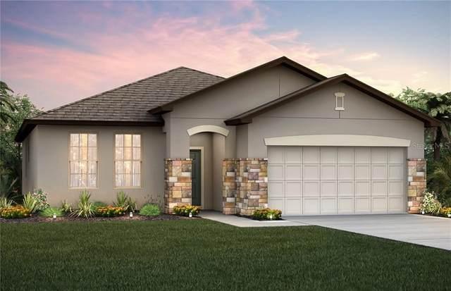 224 Citrus Isle Loop, Davenport, FL 33837 (MLS #O5868896) :: Bustamante Real Estate