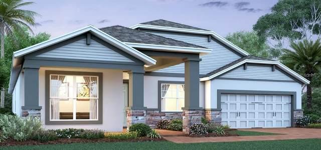 1653 Cranleigh Drive, Winter Garden, FL 34787 (MLS #O5869181) :: Bustamante Real Estate