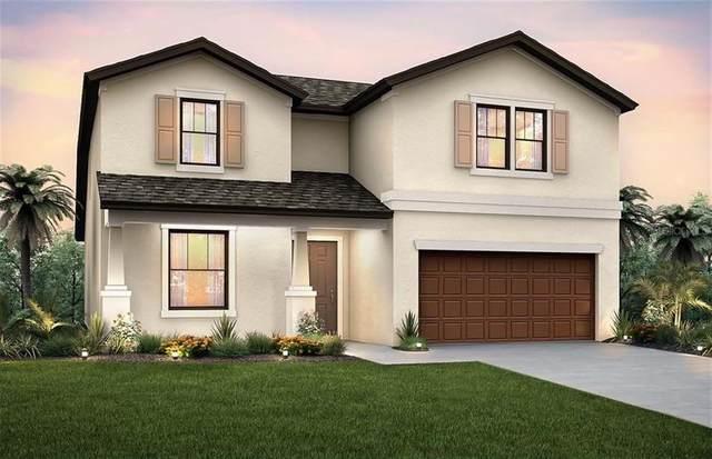 8814 Fox Drive, Polk City, FL 33868 (MLS #O5869645) :: Cartwright Realty