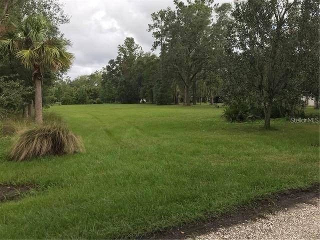 206 Betsy Run, Longwood, FL 32779 (MLS #O5869841) :: Team Bohannon Keller Williams, Tampa Properties