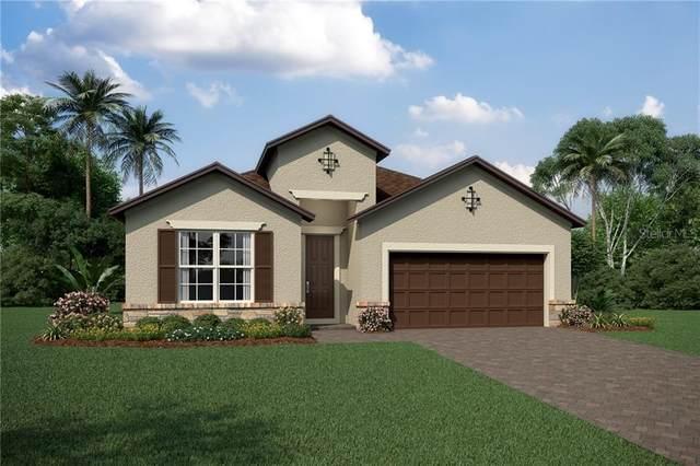 12183 Ryegrass Trail, Orlando, FL 32824 (MLS #O5869938) :: The Duncan Duo Team