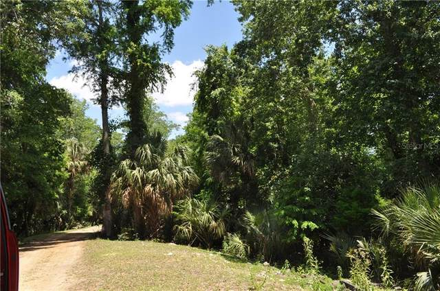 1350 Tallahassee Boulevard, Intercession City, FL 33848 (MLS #O5870053) :: Gate Arty & the Group - Keller Williams Realty Smart