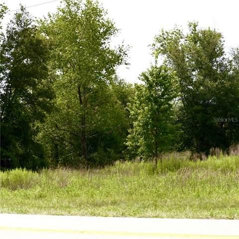 State Road 44, Eustis, FL 32736 (MLS #O5870302) :: Griffin Group