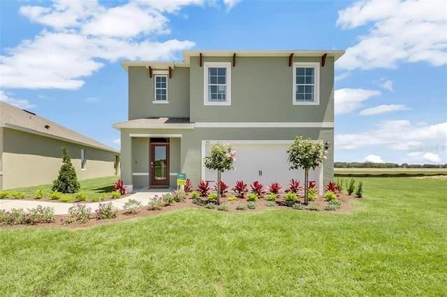 1933 Egret Meadow Avenue, Kissimmee, FL 34744 (MLS #O5870539) :: Pepine Realty
