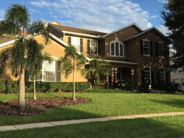 2809 Sleeping Dragon Lane, Kissimmee, FL 34747 (MLS #O5870612) :: Burwell Real Estate