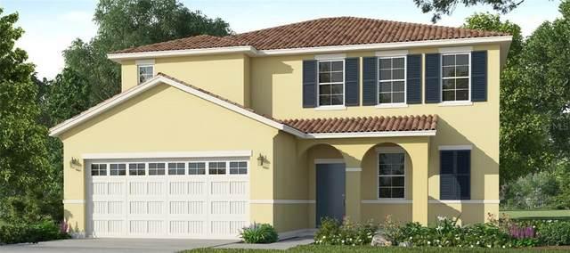 7568 Oakmoss Loop, Davenport, FL 33837 (MLS #O5870817) :: Cartwright Realty