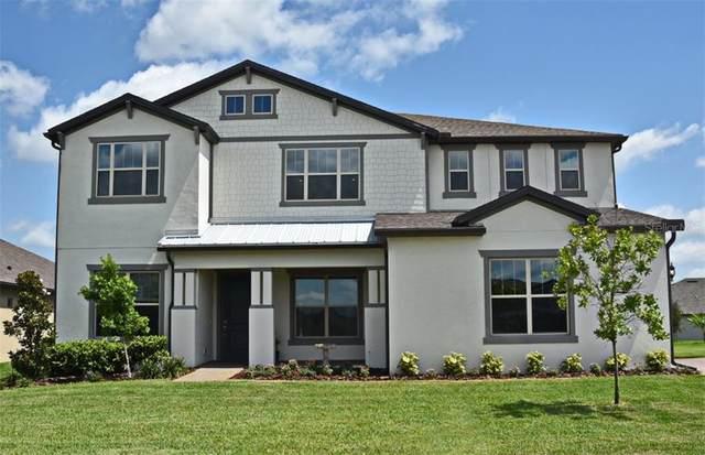 15091 Cuddy Court, Orlando, FL 32820 (MLS #O5871416) :: Pepine Realty