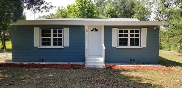 805 Hickory Ln, Fort Meade, FL 33841 (MLS #O5871820) :: Griffin Group