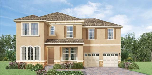 9898 Beach Port Drive, Winter Garden, FL 34787 (MLS #O5872124) :: Bustamante Real Estate