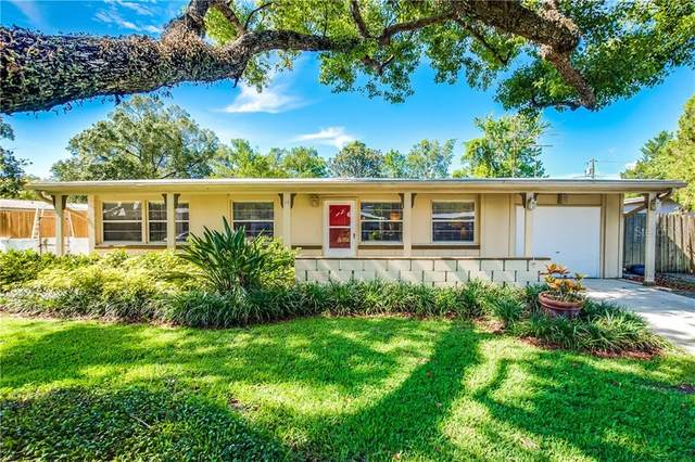 3410 Seagrape Drive, Winter Park, FL 32792 (MLS #O5873137) :: Rabell Realty Group