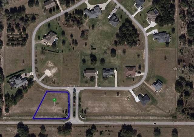 18243 Great Blue Heron Drive, Groveland, FL 34736 (MLS #O5873191) :: Team Bohannon Keller Williams, Tampa Properties