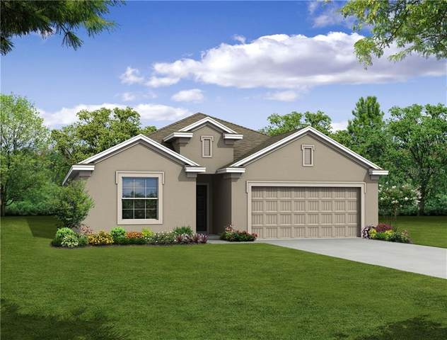 31117 Jazz Leaf Place, San Antonio, FL 33576 (MLS #O5873215) :: Delta Realty Int