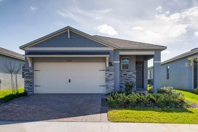 17350 Blazing Star Circle, Clermont, FL 34714 (MLS #O5873265) :: Team Bohannon Keller Williams, Tampa Properties