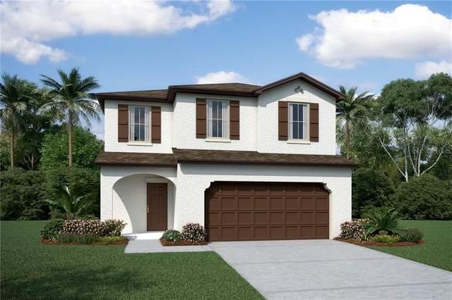 2991 Crest Drive, Kissimmee, FL 34744 (MLS #O5873311) :: Pepine Realty