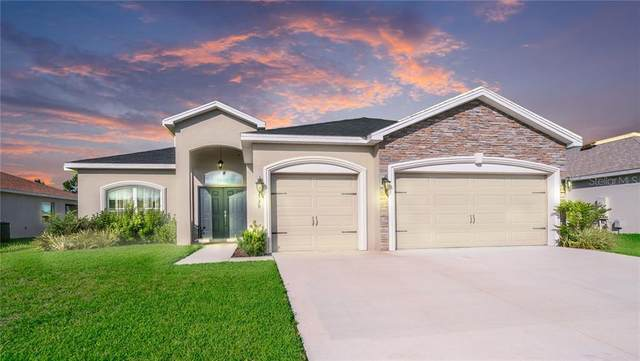 4539 Calumet Drive, Saint Cloud, FL 34772 (MLS #O5873548) :: Bustamante Real Estate