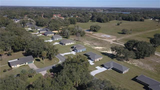 4642 E Walker Street, Inverness, FL 34453 (MLS #O5873636) :: Young Real Estate