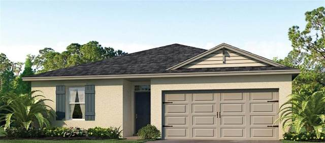 5852 Arlington River Drive, Lakeland, FL 33811 (MLS #O5873902) :: The Light Team