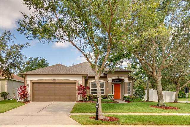 2663 Glenbuck Court, Ocoee, FL 34761 (MLS #O5874699) :: Armel Real Estate