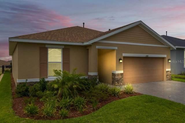 99 Silver Maple Road, Groveland, FL 34736 (MLS #O5874781) :: Burwell Real Estate