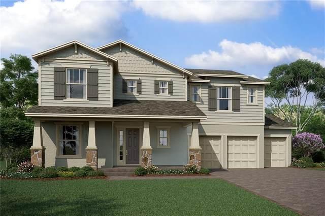610 Primrose Willow Way, Apopka, FL 32712 (MLS #O5874816) :: Griffin Group