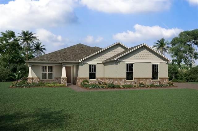 682 Primrose Willow Way, Apopka, FL 32712 (MLS #O5874844) :: Team Bohannon Keller Williams, Tampa Properties