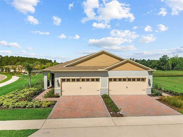 29113 Armoyan Boulevard, Leesburg, FL 34748 (MLS #O5874961) :: Dalton Wade Real Estate Group