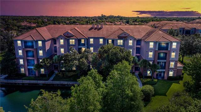 1355 Venezia Court #203, Davenport, FL 33896 (MLS #O5874993) :: Bustamante Real Estate