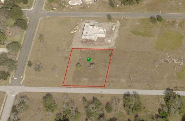 376 W Pennsylvania Avenue, Lake Helen, FL 32744 (MLS #O5875001) :: EXIT King Realty