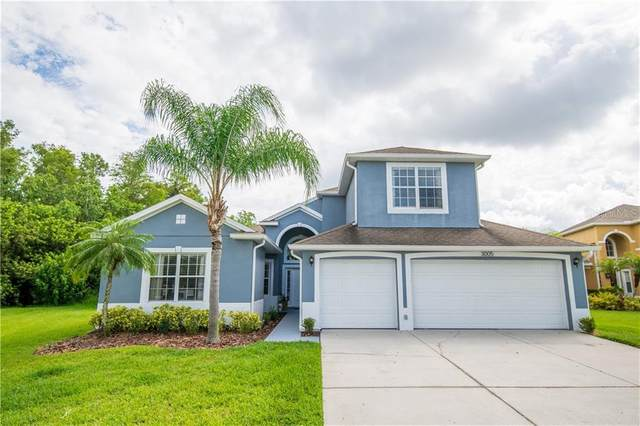 3005 Silver Leaf Court, Kissimmee, FL 34741 (MLS #O5875025) :: EXIT King Realty