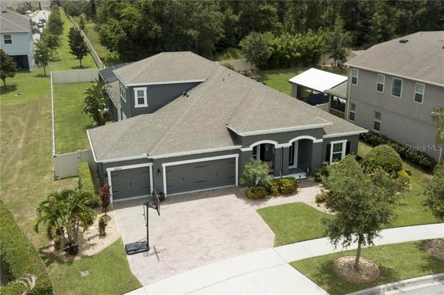 15973 Black Hickory Drive, Winter Garden, FL 34787 (MLS #O5875308) :: The Light Team