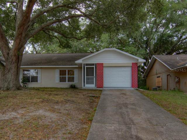 7134 Blue Earth Court, Orlando, FL 32818 (MLS #O5875387) :: Rabell Realty Group
