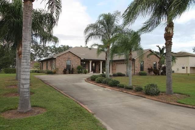 2805 Sand Crane Lane, Kissimmee, FL 34744 (MLS #O5875422) :: Bustamante Real Estate