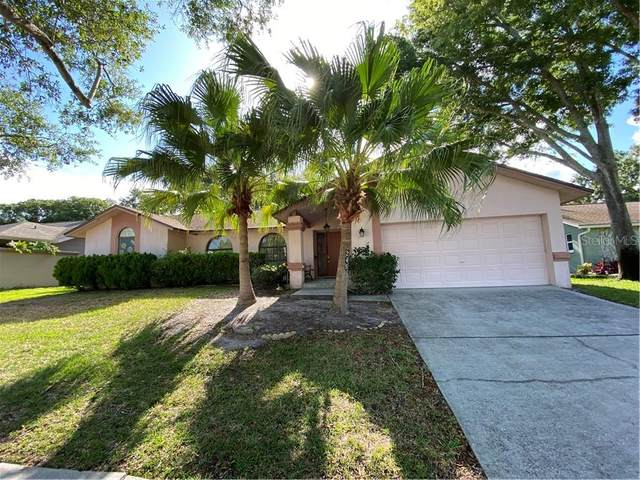 245 Allens Ridge Drive, Palm Harbor, FL 34683 (MLS #O5875495) :: Your Florida House Team