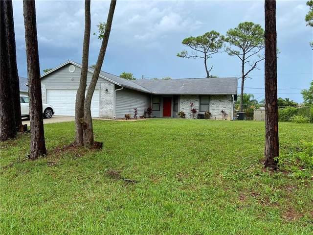 2621 Travelers Palm Drive, Edgewater, FL 32141 (MLS #O5875533) :: BuySellLiveFlorida.com