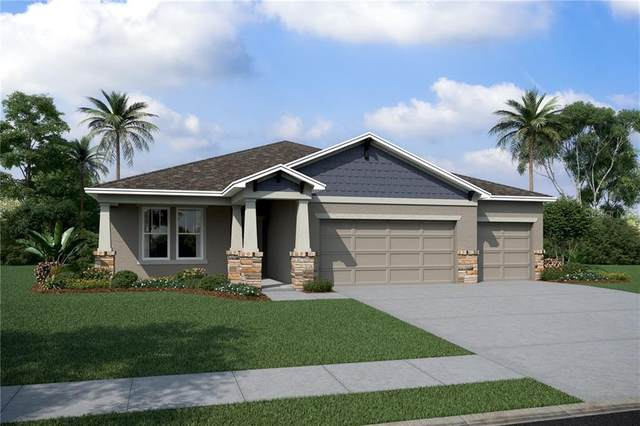 13107 Bahia Grass Lane #819, Riverview, FL 33579 (MLS #O5875902) :: Alpha Equity Team