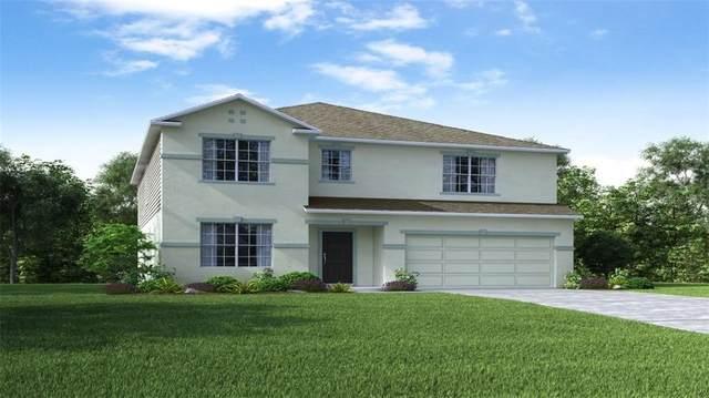 11333 June Briar Loop, San Antonio, FL 33576 (MLS #O5876137) :: Mark and Joni Coulter   Better Homes and Gardens