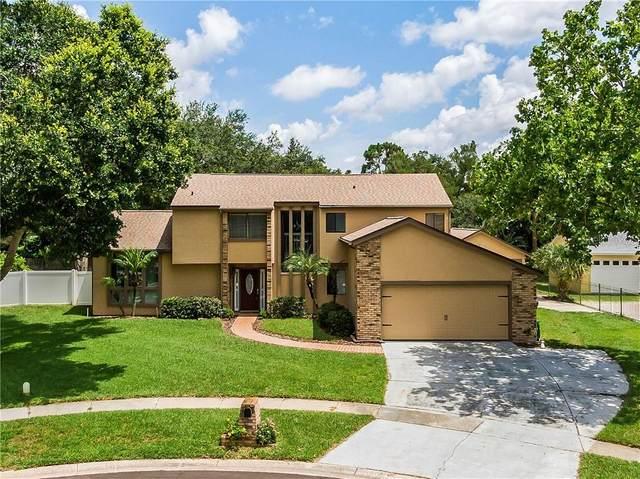 6700 Spring Rain Drive, Orlando, FL 32819 (MLS #O5876146) :: GO Realty